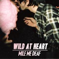 Mile Me Deaf – Österreichische Noisepop-Szene sehr kreativ